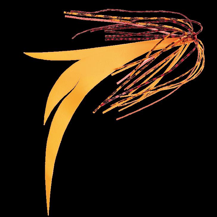2.赤海老