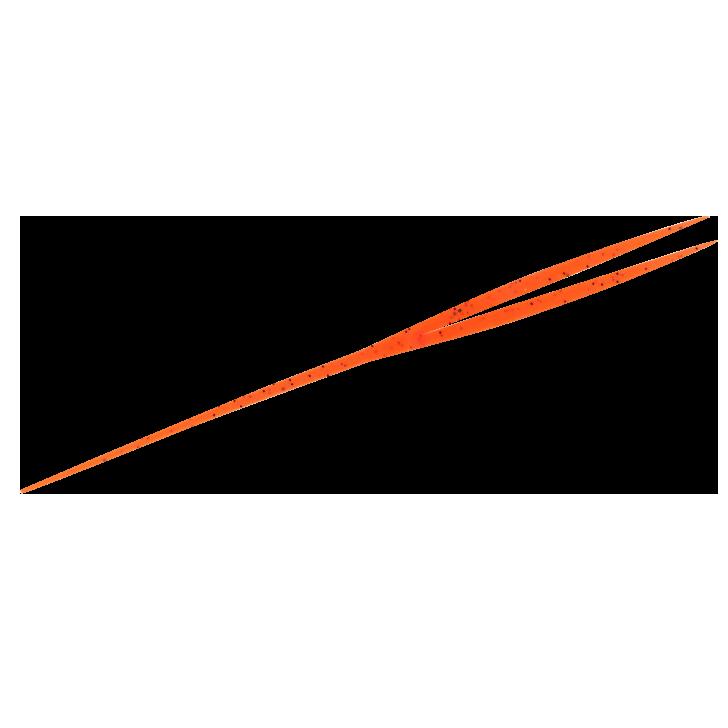 3.オレンジシュリンプ