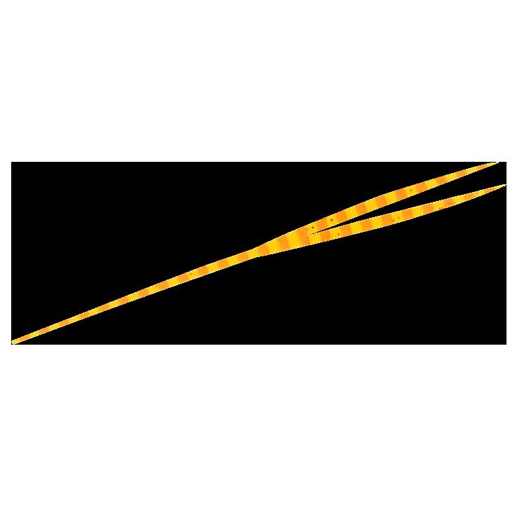 5.エビオレンジゼブラ