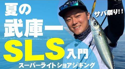 【武庫一×ジャックアイ】夏の武庫川一文字SLS(スーパーライトショアジギング)入門