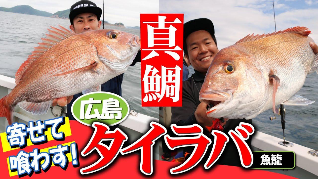 真鯛を寄せて喰わす!広島タイラバゲーム!!@魚籠